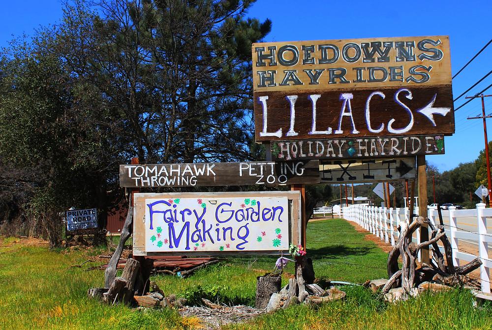Julian Lilac Festival