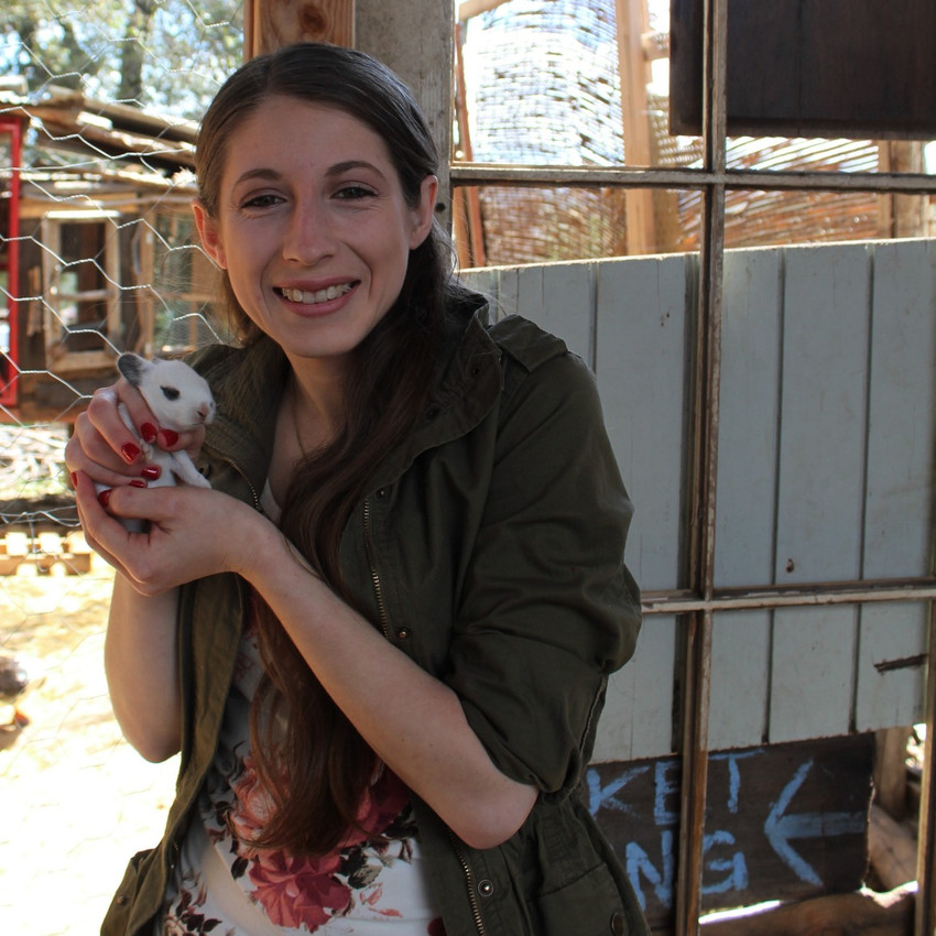Check out the petting zoo at Fort Cross in Julian, CA