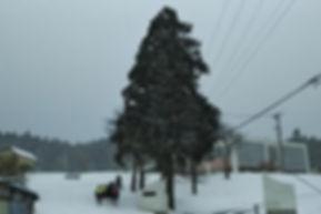 冬の学校坂道.jpg