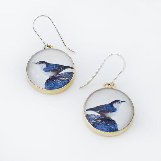 Nuthatch Photo Earrings/Brass  (in stock)