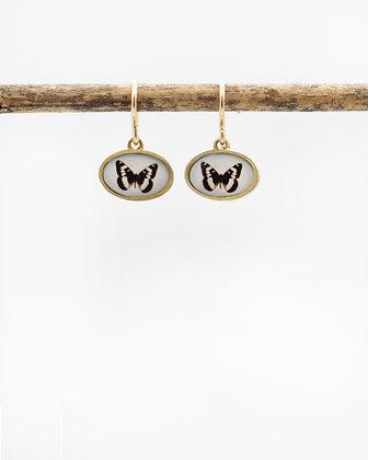 Butterfly Photo Earrings( IN STOCK)