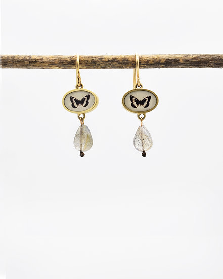Butterfly Photo Earrings ( IN STOCK) Bronze with Labradorite