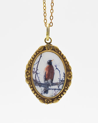 Robin Photo Pendant Necklace( IN STOCK)