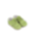 Little Green Shoes