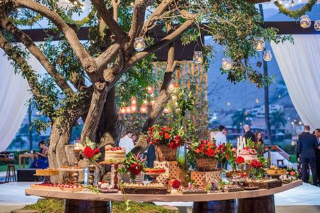 Catering bodas