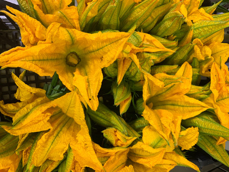 Giugno: i fiori di zucchine