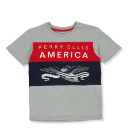 Perry Ellis Boys' Banner Eagle T-Shirt