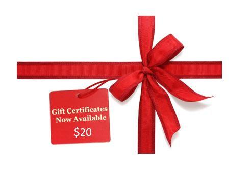$20 MzWilliesKidz Gift Certificate