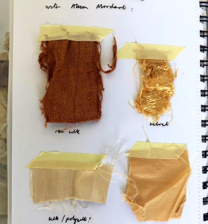 Onion Skin Dyes
