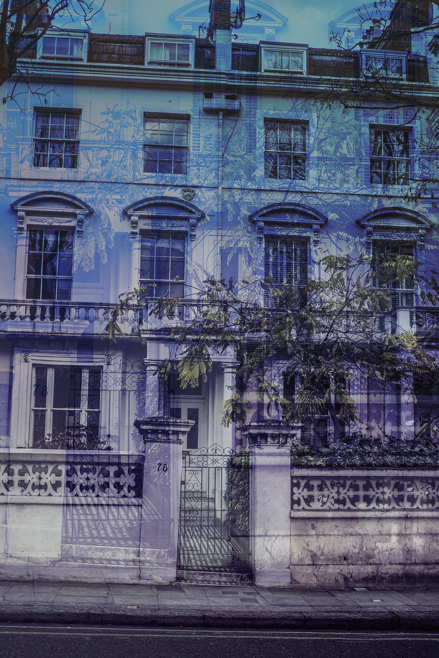 Blue Portobello