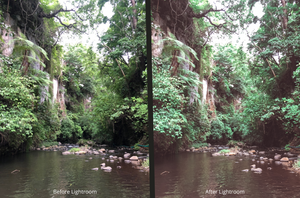 using preset from preseter called road to bali before and after picture of lightroom in costa rica