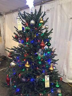 Tree14.jpg
