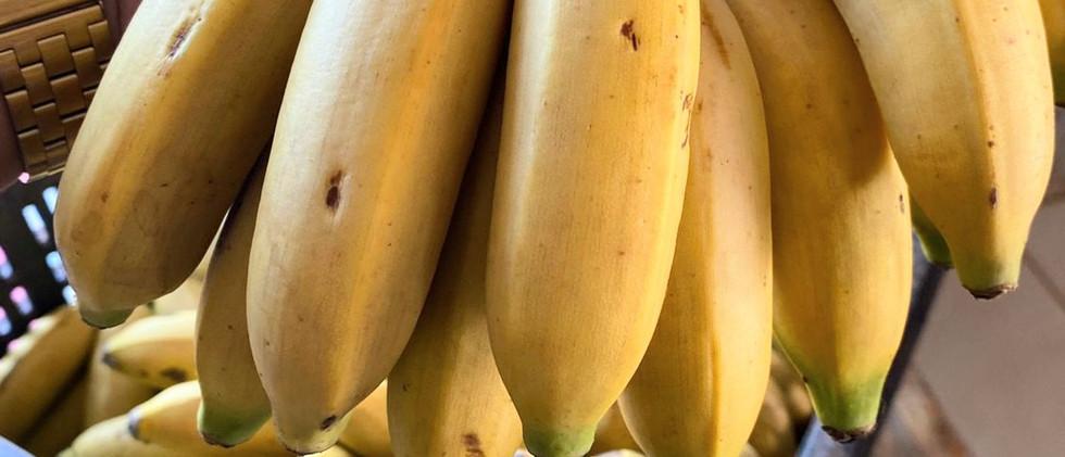 Frutas, verduras e legumes adicionados à merenda escolar