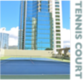 Hawaiki Tower, Tennis Court, views, private