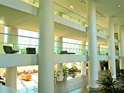 Hawaiki Tower, Lobby, Open, Spacious