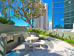 Hawaiki Tower, BBQ Areas, fun, family, recreation