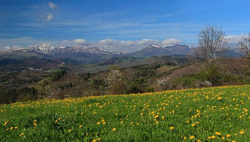 Vallée_verte_printemps_01.jpg