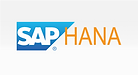 SAP-hana-warehouse-management-system-wms
