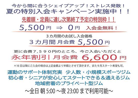 8月特別キャンペーンPOP_アートボード 1.jpg