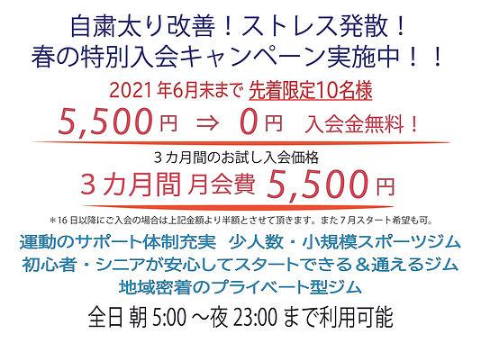 6月特別キャンペーンPOP_アートボード 1.jpg