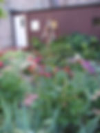Enjoy the Spred Garden