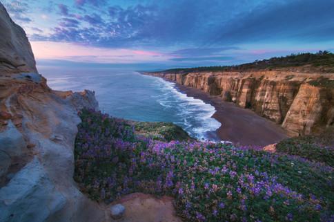 Coastal Twilight