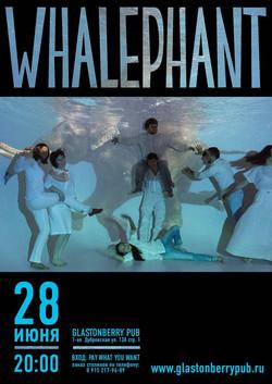 афиша концерта группы Whalephant