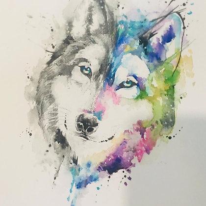 Lobo mitad y mitad