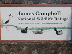 James Campbell NWR
