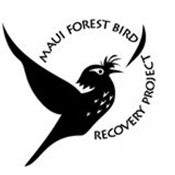 Maui Forest Bird Recovery Project