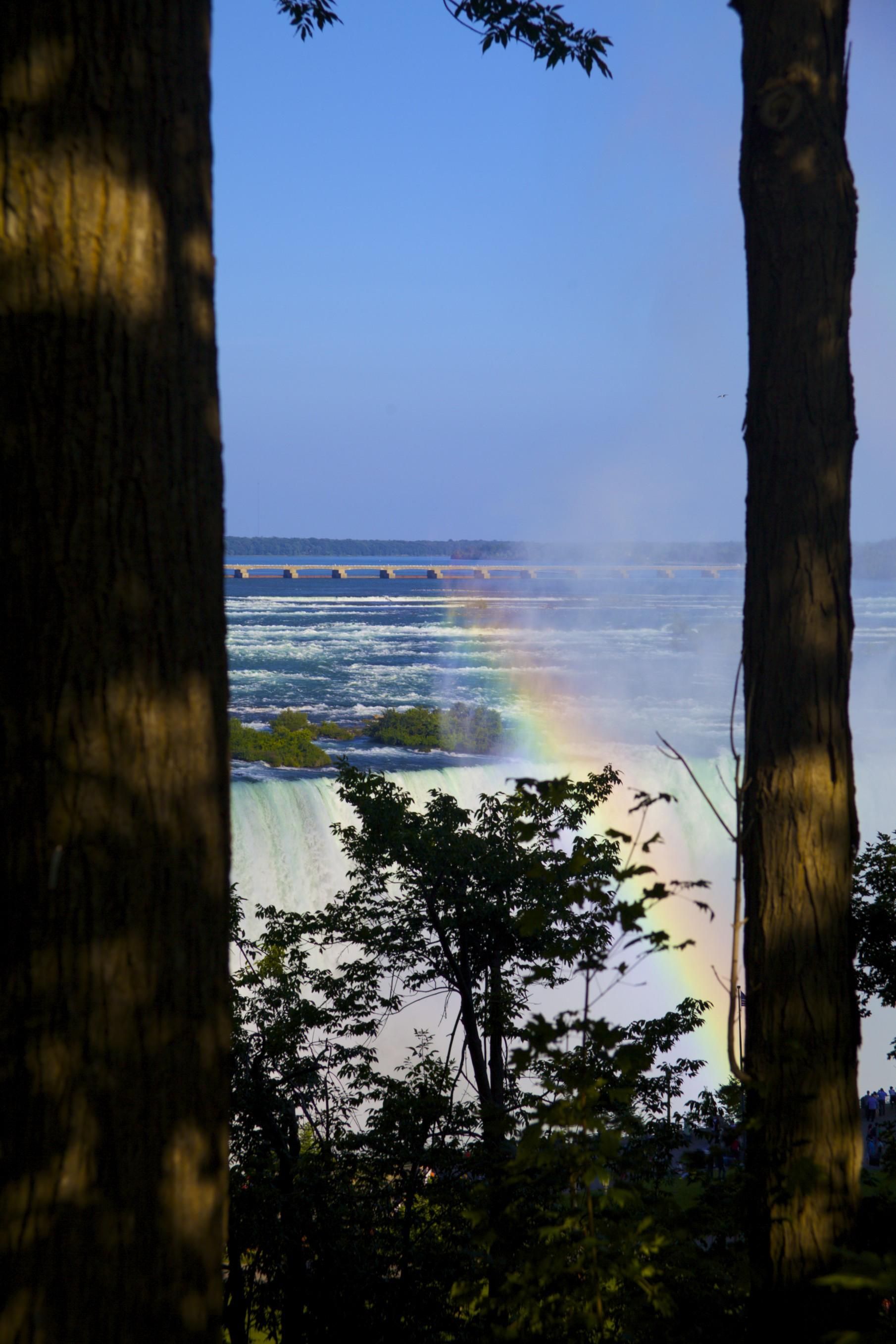 Rainbow between Trees @ Niagara
