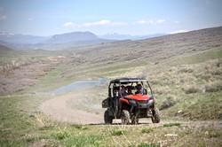ATV Bison Adventure
