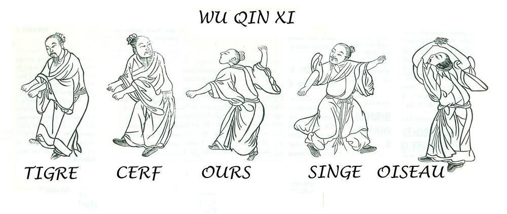 Illustrations du Jeu des Cinq Animaux (Wu Qin Xi) tirées de la Moelle du Phénix Rouge