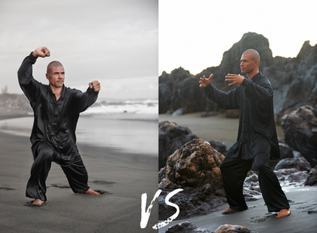 Différence entre Tai Chi et Qi Gong