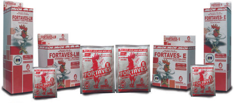 FORTAVES-E