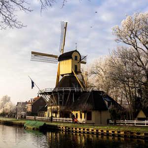 Dutch windmill on a frosty day in Weesp,