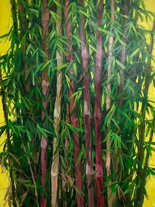 Wisdom of Bamboo Series 1