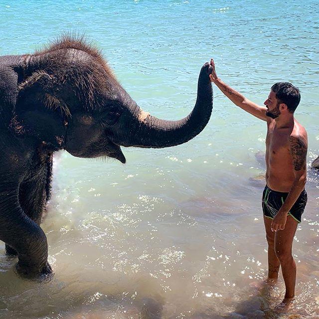 Elephant experience ( Kathu, Patong, Thailand )