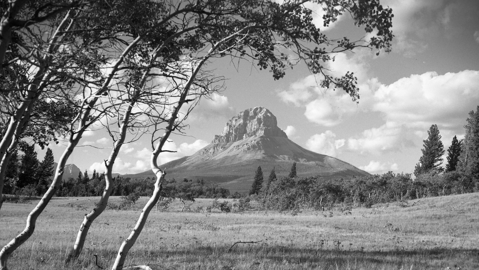 Crowsnest Mountain - GUSHUL 1951