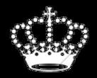 Crown chihuahua