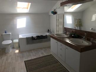 Deluxe family room bathroom