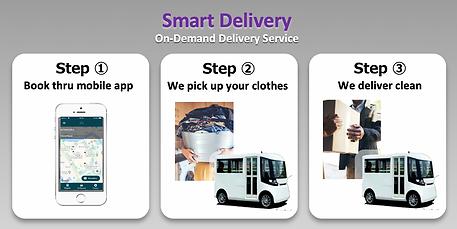 ZPi Delivery.png