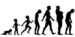 logo-silouhette-evolution
