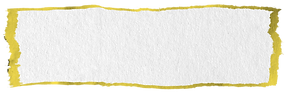yellow and white combo.png