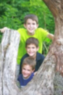 3 boys tree.jpeg