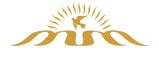 Miracle Media Logo (White and Gold).png