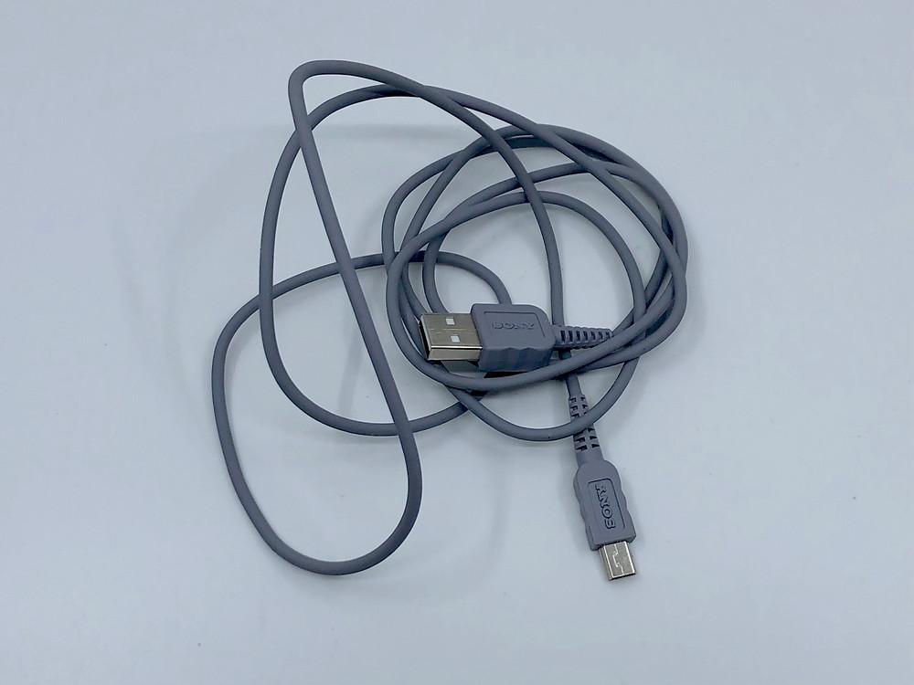 Sony Walkman VAIO VGF-AP1L 40GB Digital Audio Player