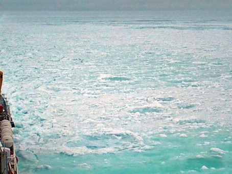 Bay Remains Frozen Due To Unprecedented Ice Build-Up