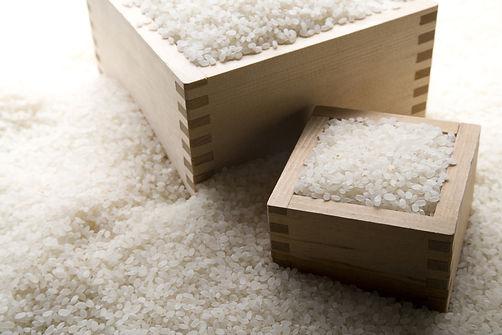 Rice for sake