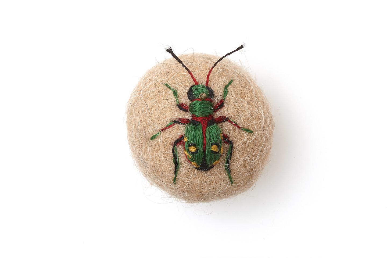 Spanish Tiger Beetle